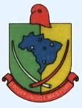 Brasão del município de Ajuricaba