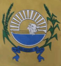 Brasão del município de Alto Horizonte