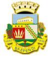 Brasão del município de Baependi