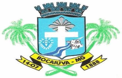 Brasão del município de Bocaiúva