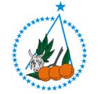 Brasão del município de Boquim
