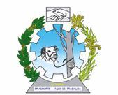 Brasão del município de Brasnorte
