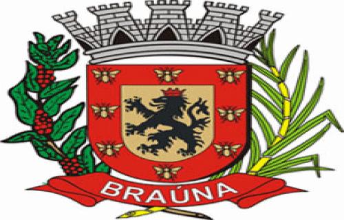 Brasão del município de Braúna