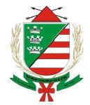 Brasão del município de Capinópolis