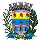 Brasão del município de Catiguá