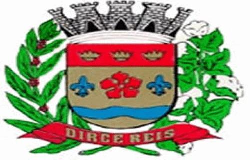 Brasão del município de Dirce Reis