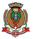 Brasão del município de Flores da Cunha