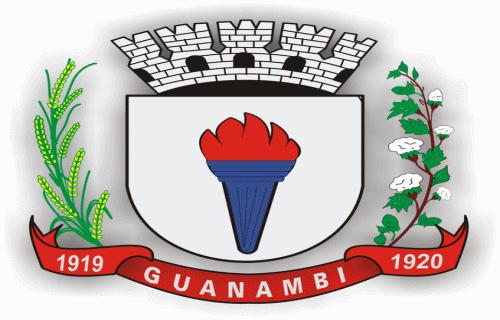 Brasão del município de Guanambi