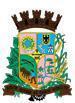 Brasão del município de Ibirama
