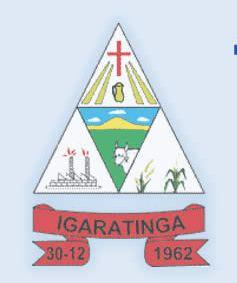 Brasão del município de Igaratinga