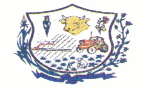 Brasão del município de Jaíba