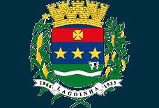 Brasão del município de Lagoinha