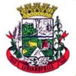 Brasão del município de Lidianópolis