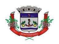 Brasão del município de Montenegro