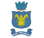 Brasão del município de Muritiba