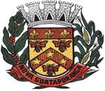 Brasão del município de Nova Guataporanga