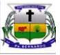 Brasão del município de Padre Bernardo