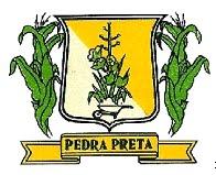 Brasão del município de Pedra Preta