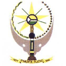 Brasão del município de Pimenta Bueno