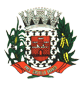 Brasão del município de Presidente Castello Branco