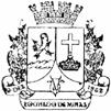 Brasão del município de Rochedo de Minas