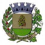 Brasão del município de Rubiácea