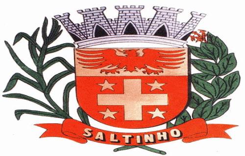 Brasão del município de Saltinho