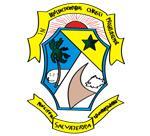 Brasão del município de Salvaterra