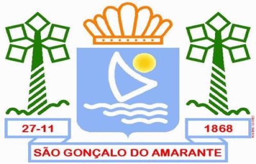 Brasão del município de São Gonçalo do Amarante