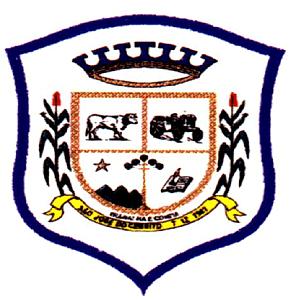 Brasão del município de São José do Cerrito
