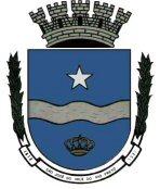 Brasão del município de São José do Vale do Rio Preto