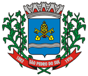 Brasão del município de São Pedro do Sul