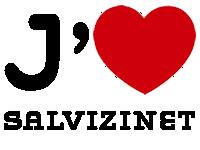 Salvizinet