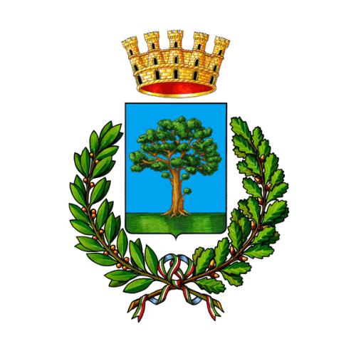 Logo del comune di Bovolone