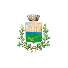 Logo del comune di Casalnuovo di Napoli