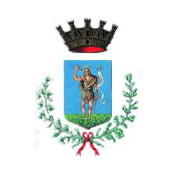 Logo del comune di San Giovanni Valdarno