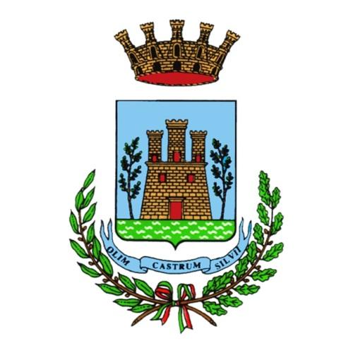 Logo del comune di Silvi