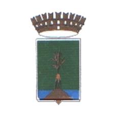 Logo del comune di Volla