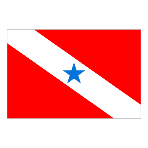 Bandiera de Pará