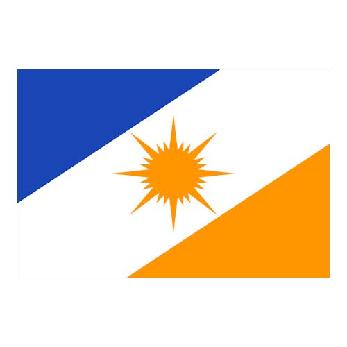 Bandiera de Tocantins