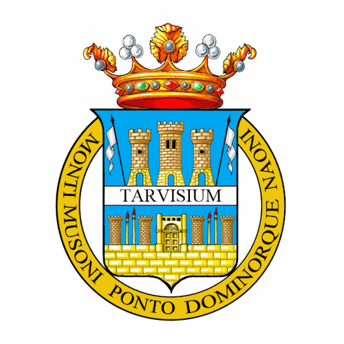 Bandiera della Provincia di Treviso